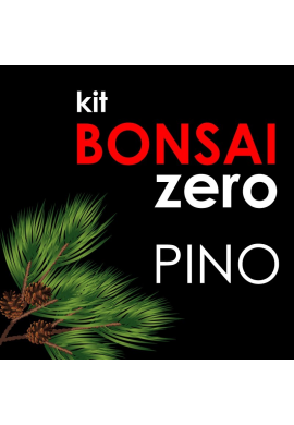 Kit Bonsai Zero Pino (Pinus Pinea)