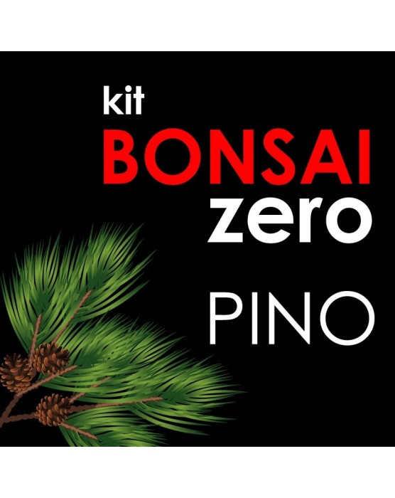 Kit Bonsai Zero Pino