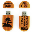 Pen Drive - Biblioteca digital