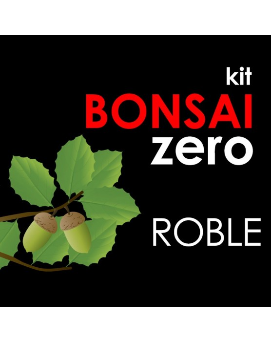 Kit Bonsai Zero Roble Quercus Robur