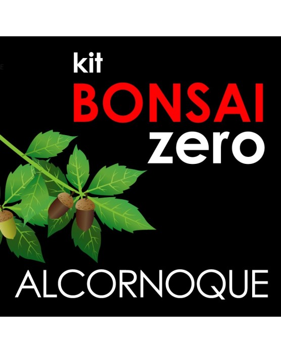 Kit Bonsai Zero Alcornoque Quercus Suber