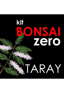 Kit Bonsai Zero Taray Tamarix
