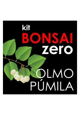 Kit Bonsai Zero Ulmus Pumila